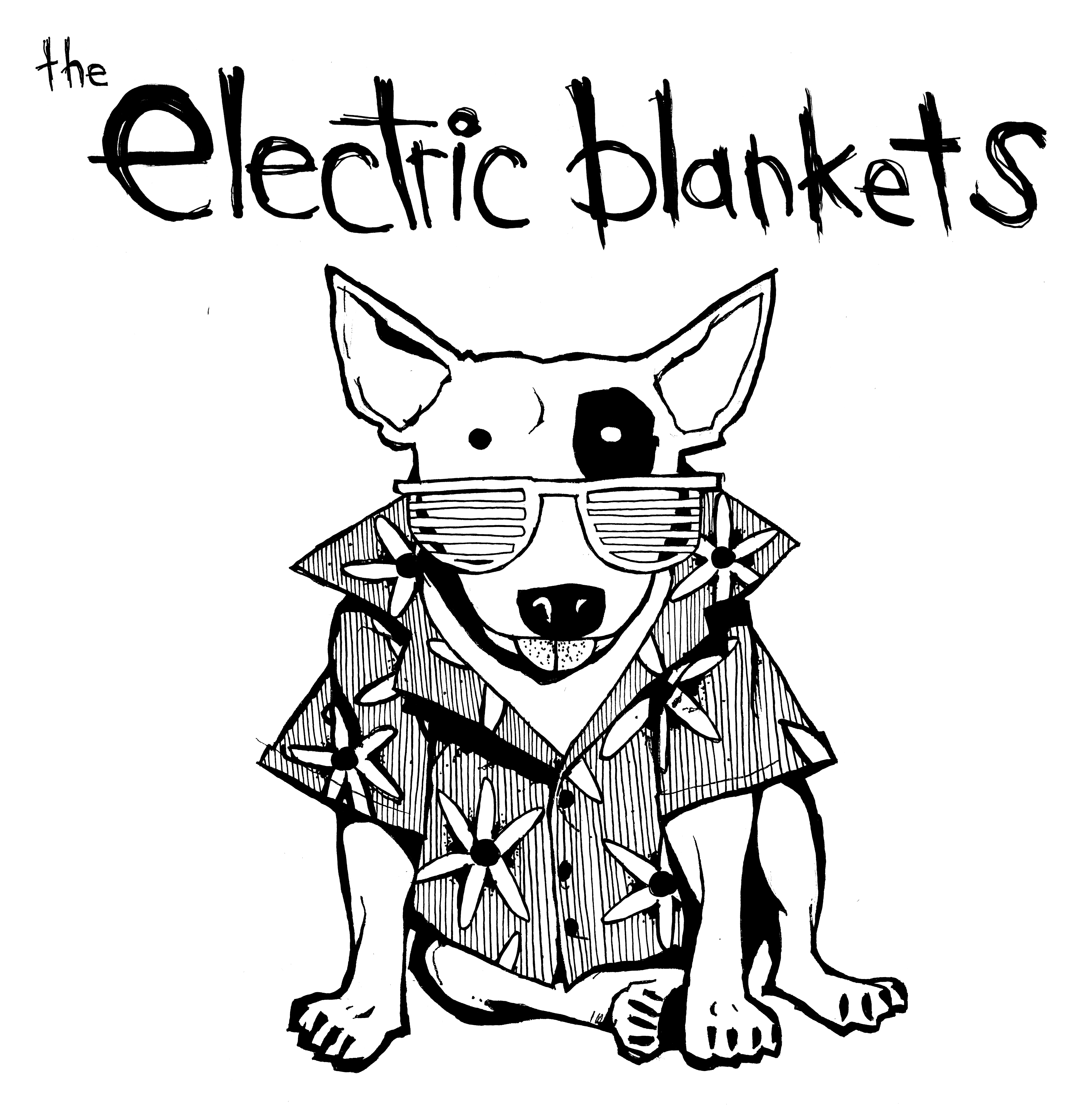 1000 Images About Dual Control Electric Blanket On